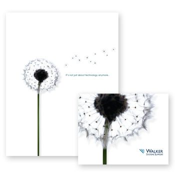 dandelion marketing material